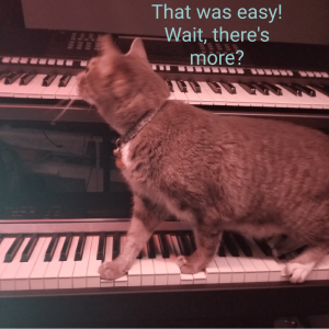 Linus the Jazz Cat