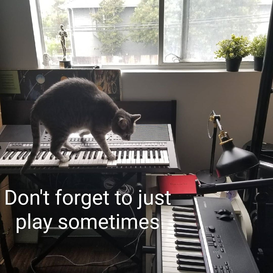 Linus the Jazz Cat on Piano